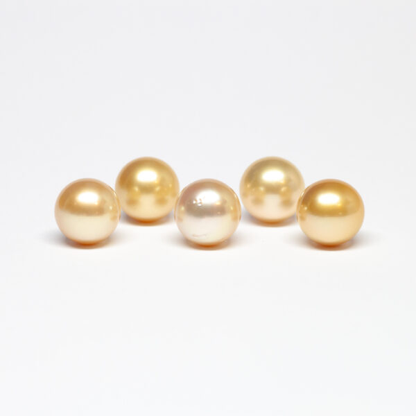South Sea golden pearls, Round shape, 12,5-13mm, C/C+ quality