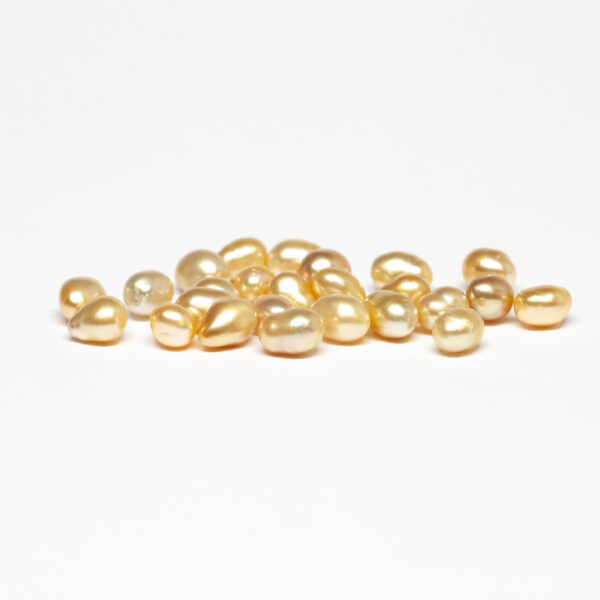 South Sea Keshi, Golden, 6-8mm, BC+ quality
